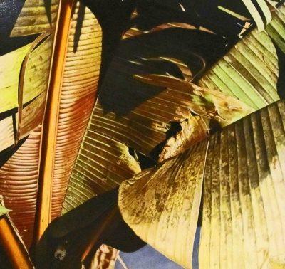 Thomas Boone art at Habatat Galleries
