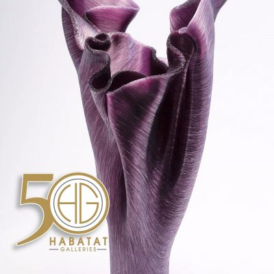 50th Anniversary Habatat Galleries
